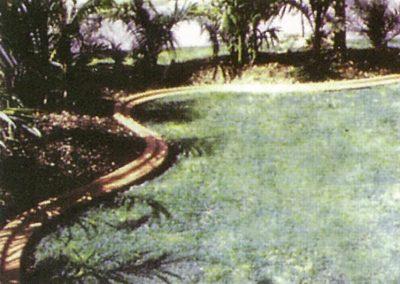 bimline-brown-pavements-trees